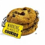 Leer Noticia - Vergüenza pública: el 82% de los sitios web del gobierno de la UE tienen cookies de publicidad de Google [ENG]
